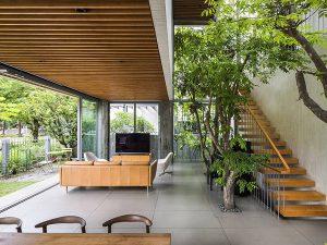 tạo không gian xanh cho ngôi nhà